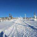 サーリセルカで子供と雪ぞり遊び 世界最長のそりコースを体験
